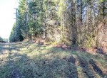 34100 NE North Fork Rd, Carnation 98014